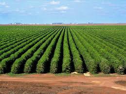 Be farmed with khetigaadi.com!