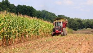 Ways To Improve Agriculture Crop Productivity In India