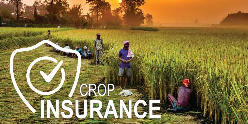 Best Crop Insurance Schemes in India