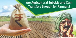 Are Agricultural Subsidy and Cash Transfers Enough for Farmers?
