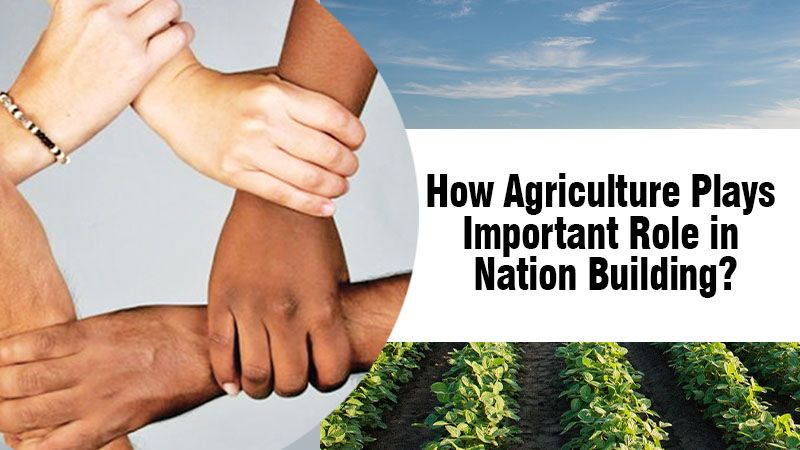 How Agriculture Plays Important Role in Nation Building