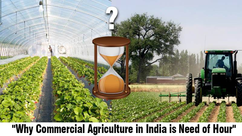 Why Commercial Agriculture in India is Need of Hour