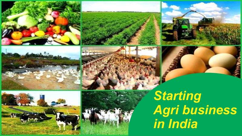 Starting Agribusiness in India – Here are the Guidelines