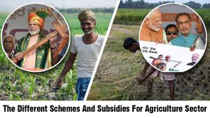 The Different Schemes And Subsidies For Agriculture Sector