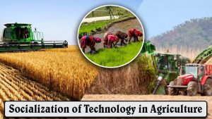 Socialization of Technology in Agriculture