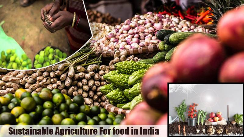 Sustainable Agriculture For food in India