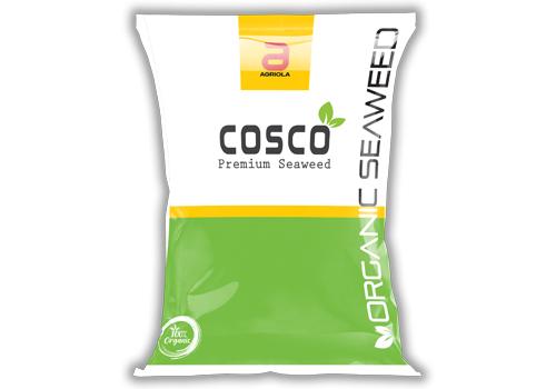 Cosco 100gm