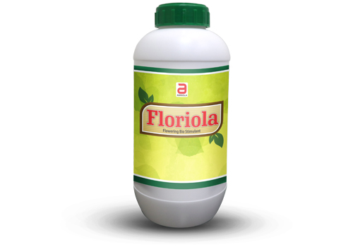 Floriola 250ml