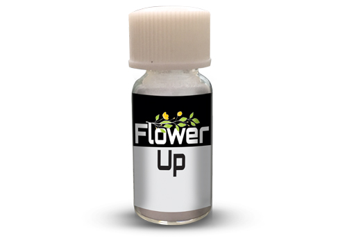 Flower Up(1 gm)