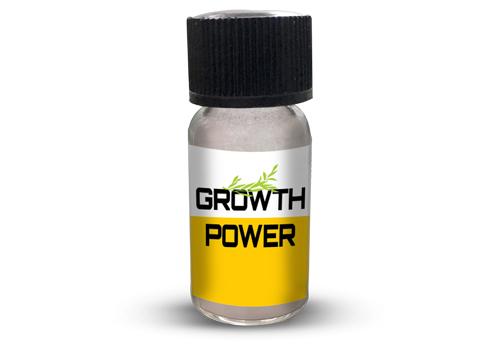 Growth Power(1 gm)