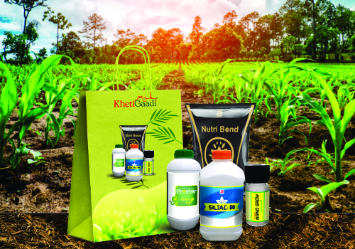 Growth Special Plus Kit