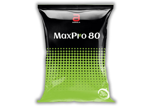 MaxPro80 300gm