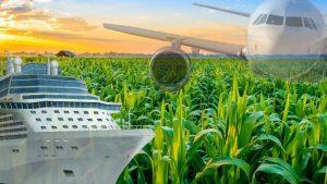 भारत का कृषि निर्यात बढ़ रहा है: आर्थिक सर्वेक्षण