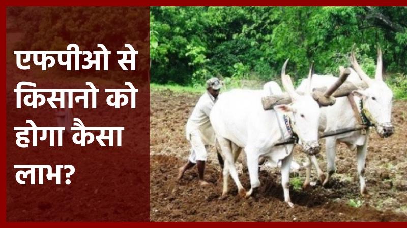 किसानों के लिए 2,500 किसान उत्पादक संगठन स्थापित किए जाएंगे