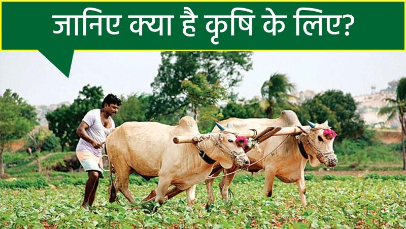 बजट 2021: कृषि के लिए बड़े ऐलान