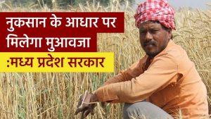 मध्य प्रदेश के किसानों को मिली राहत