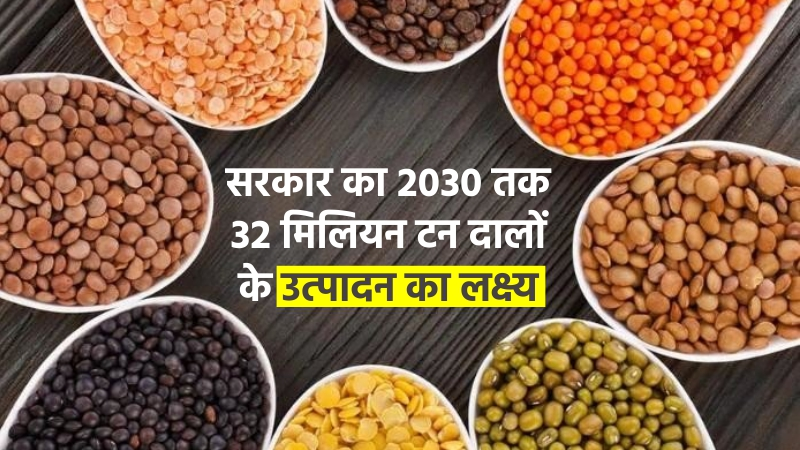 सरकार का २०३० तक ३२ मिलियन टन दालों के उत्पादन का  लक्ष्य