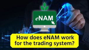 eNAM Works For The Trading System With Agricultural Services