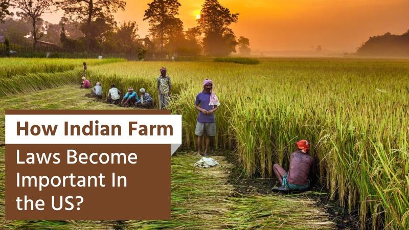 Farm Laws Become An International Interest
