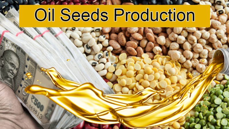 In Budget 2021 Plans to Increase in The Production Of Oil Seeds