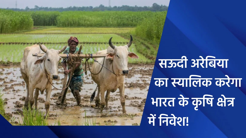 सऊदी अरेबिया का स्यालिक करेगा भारत के कृषि क्षेत्र में निवेश