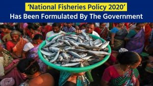 Invitation To Stakeholders To Comments On National Fisheries Policy