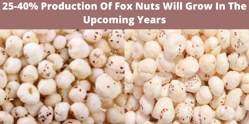 Demand Of Fox Nuts (Makhana) Products Will Rise In Next Three Years
