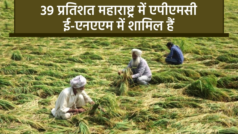 केंद्र सरकार किसानों और व्यापारियों को ई-एनएएम में प्रवेश करने के लिए दे रही है ज़ोर