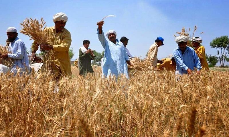 पंजाब अप्रैल से किसानों के लिए प्रत्यक्ष बैंक हस्तांतरण (डीबीटी) को लागू करने के लिए सहमत है