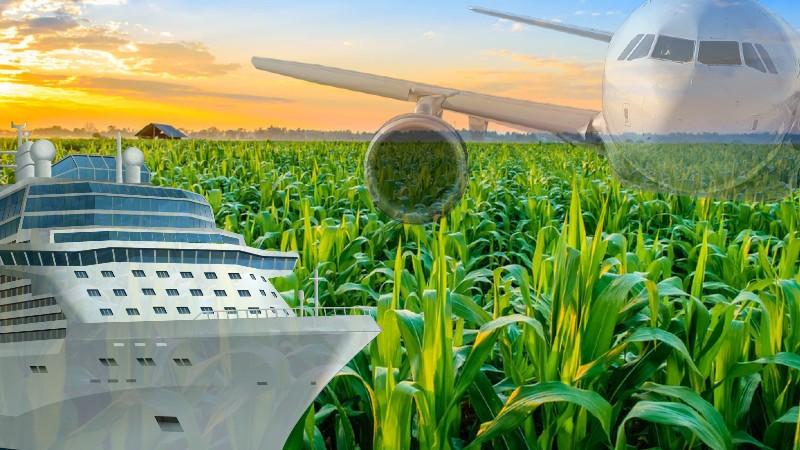 निर्यातकों का कहना है कि 2021-22 में कृषि निर्यात 20 प्रतिशत बढ़ सकता है