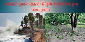 गुजरात : चक्रवाती तूफ़ान 'ताऊ ते' से कृषि बागवानी को १,०८५ करोड़ रुपये का नुकसान