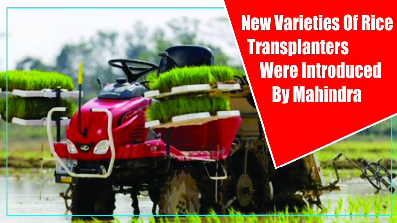 New Varieties Of Rice Transplanters Were Introduced By Mahindra