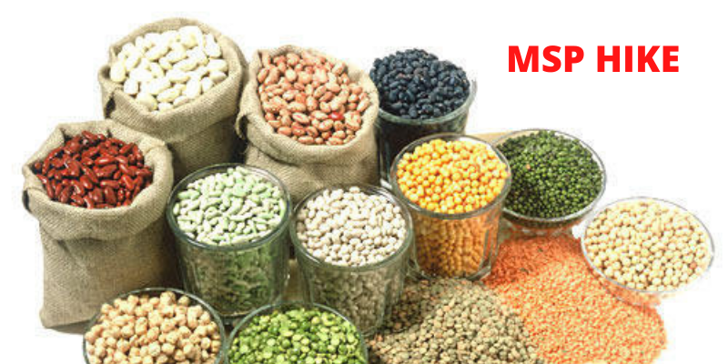 MSPs Hike On Rabi Crops Decided By The Central Government
