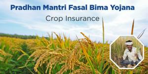बारिश से हुई फसल के नुकसान से किसानों ने किया बीमा कंपनी से आग्रह