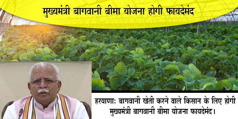 मुख्यमंत्री बागवानी बीमा योजना से किसानों को होगा लाभ