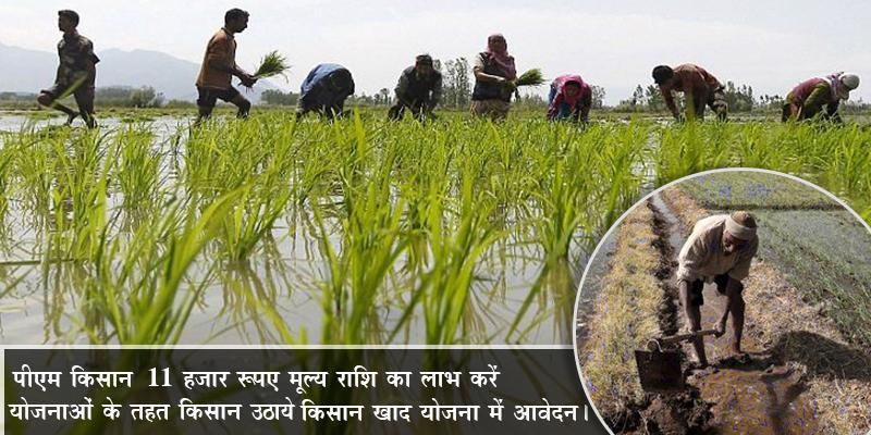 किसानों के लिए पीएम किसान खाद योजना है फायदेमंद।