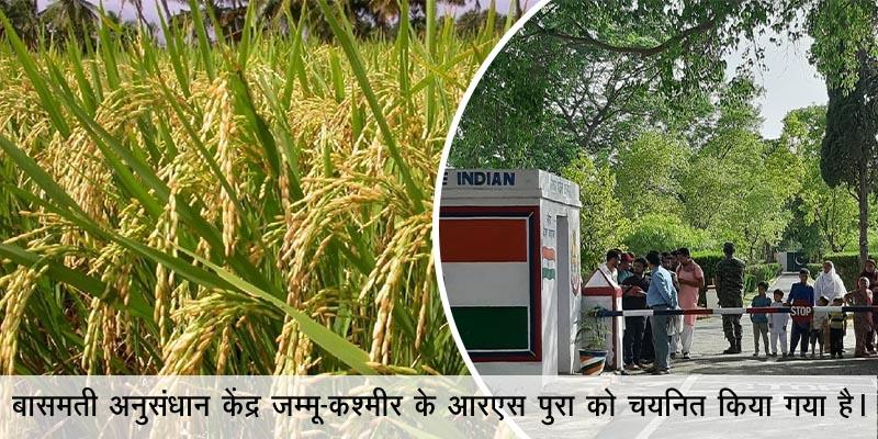जम्मू कश्मीर में जल्द ही बनेगा बासमती अनुसंधान केंद्र, सरकार ने दी मंजूरी