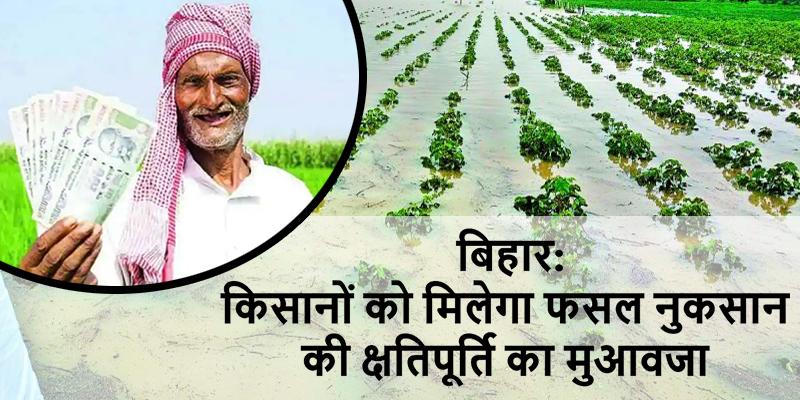 बिहार: किसानों को मिलेगा फसल नुकसान की क्षतिपूर्ति का मुआवजा